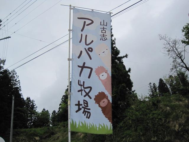 新潟 047