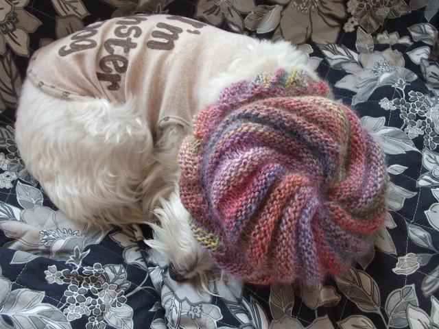 渦巻きの手編みの帽子