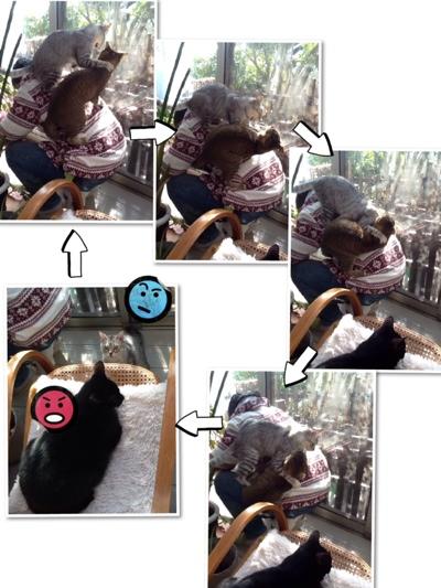fc2blog_2014021218483747f.jpg