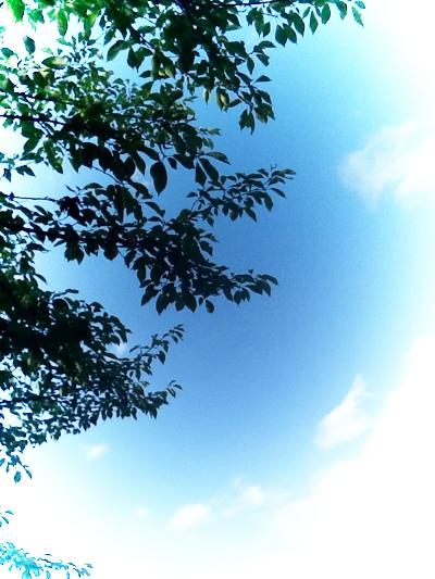 fc2blog_20140704174906e72.jpg