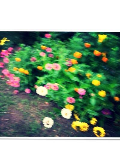fc2blog_20140809172533558.jpg