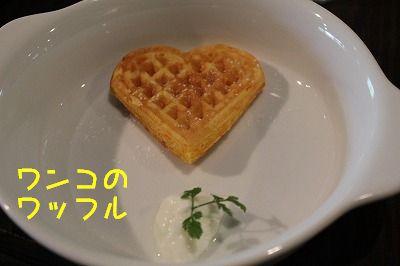 なす045