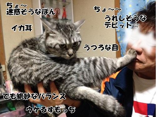 13_20140404210114fc1.jpg