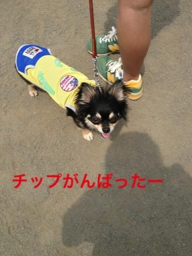 fc2blog_20140622230730893.jpg