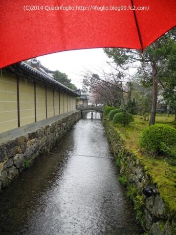 2014年 京都・春 その①