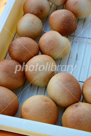 3110172 焼き立てパン