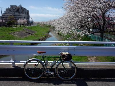 photo_randner_minumahosikawa_20_sakura_1_2014_0405.jpg