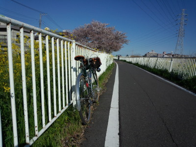 photo_randner_minumahosikawa_2_sinsibagawa_1_2014_0405.jpg