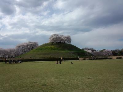 photo_randner_minumahosikawa_sakitama_1_enfun_3_2014_0405.jpg