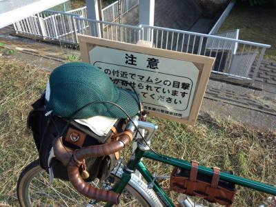 photo_randner_tamagawa_1_mamusi_2014_0524.jpg