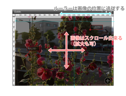 DSC0220369.png