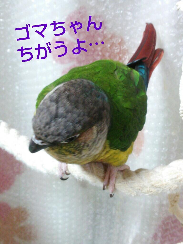 fc2_2014-02-19_22-18-59-479.jpg