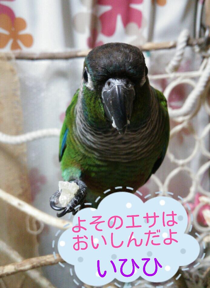 fc2_2014-03-25_20-59-28-568.jpg