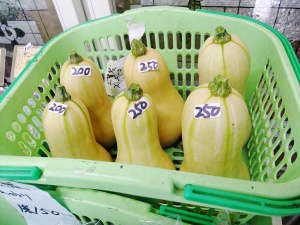 バターナッツ南瓜