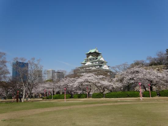 2014年桜2