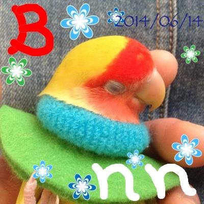 fc2blog_20140614113934cbe.jpg