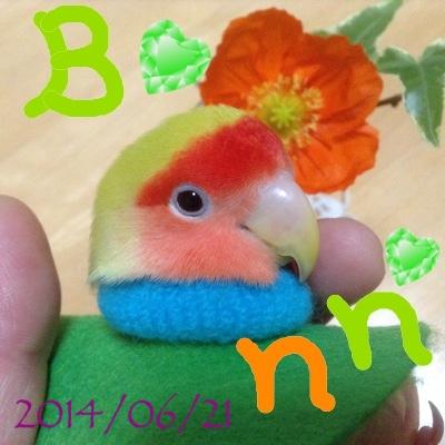 fc2blog_2014062101113256e.jpg
