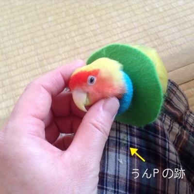 fc2blog_2014062101340465d.jpg