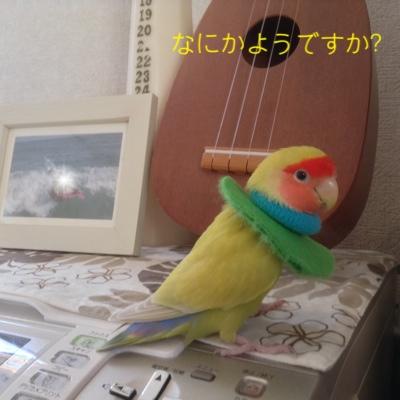 fc2blog_20140621143940c82.jpg