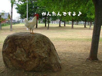 ni-246_20140621214049d73.jpg