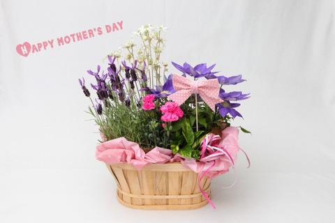 母の日 プレゼント 人気 花