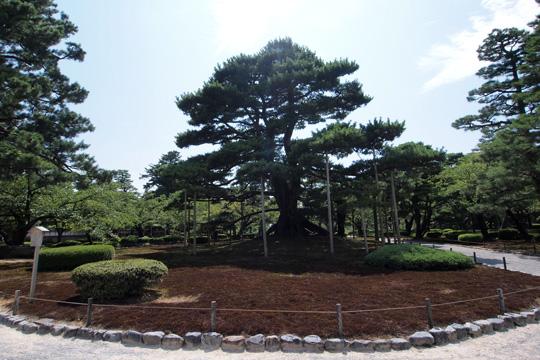 20130818_kenrokuen_garden-23.jpg