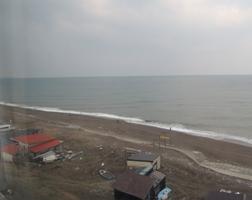 3月16日朝の風景