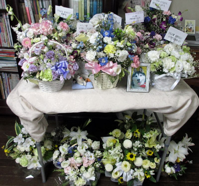 お花畑みたいなトリュフの祭壇