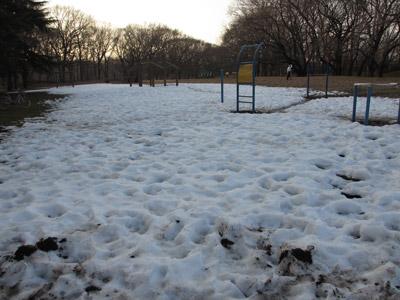 雪のわんぱく広場