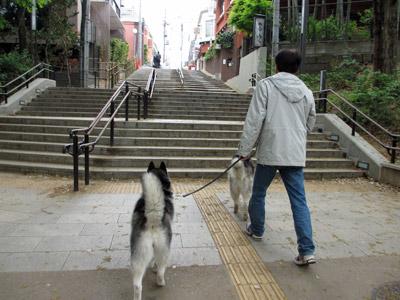 いせや前の階段