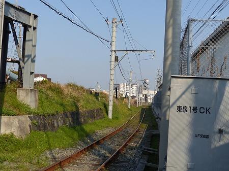 14ykumamoto (23)