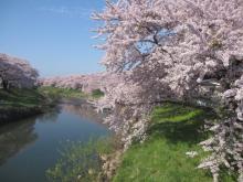 taiheigawa01.jpg