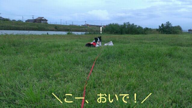 fc2_2014-09-17_20-58-21-699.jpg