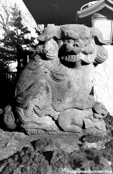 豊田神社(江戸川区東瑞江)7