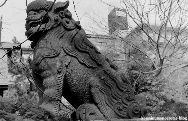 天祖神社(江戸川区大杉)1
