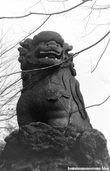 天祖神社(江戸川区大杉)2