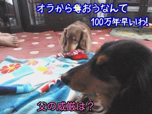 201403261657473bb.jpg