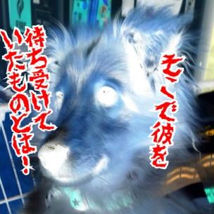 fc2blog_20140313155733350.jpg