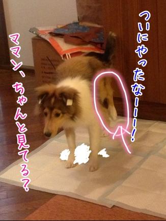 fc2blog_20140328194557061.jpg