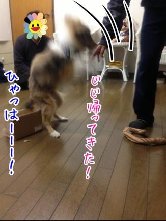 fc2blog_20140329211038001.jpg