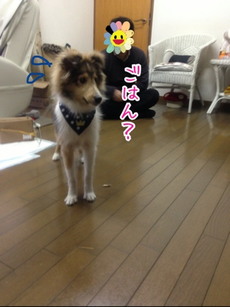 fc2blog_20140329211838f94.jpg