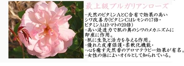 【アイソイ】レーザーホワイトシリーズ