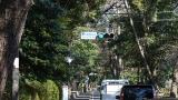 20140308寒川神社074