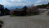 20140308寒川神社139