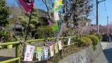 20140308寒川神社154
