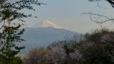 20140412香貫山13