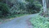 20140712原生の森068