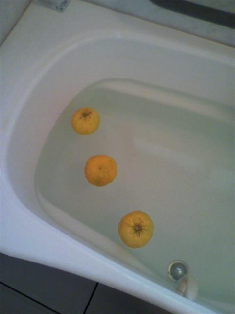 朝風呂に柚子が入ってました(^^)