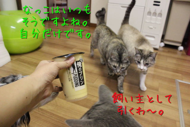 kako-7Au04wcONe5VlTox.jpg