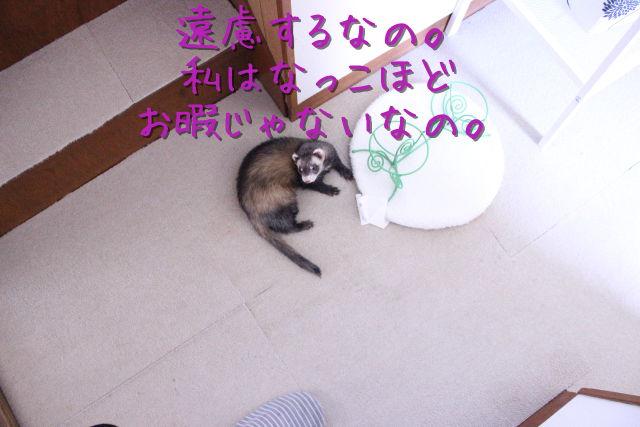 kako-iQ0f4PHcEC2xqisd.jpg